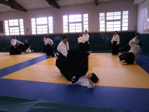 My French Life aikido