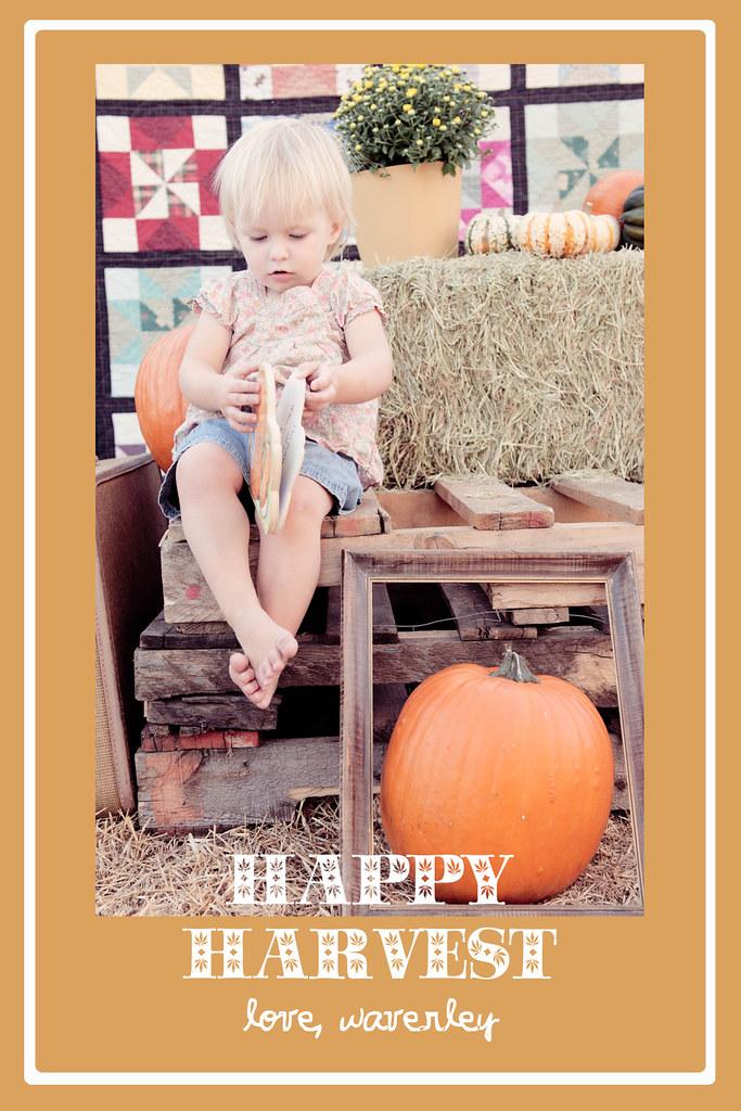 Happy Harvest5