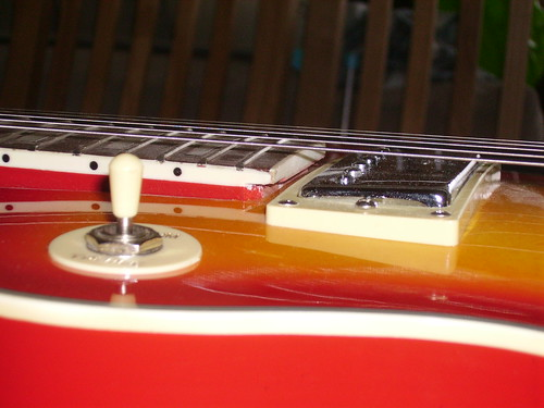 Swift LP Copy - Fretboard Binding