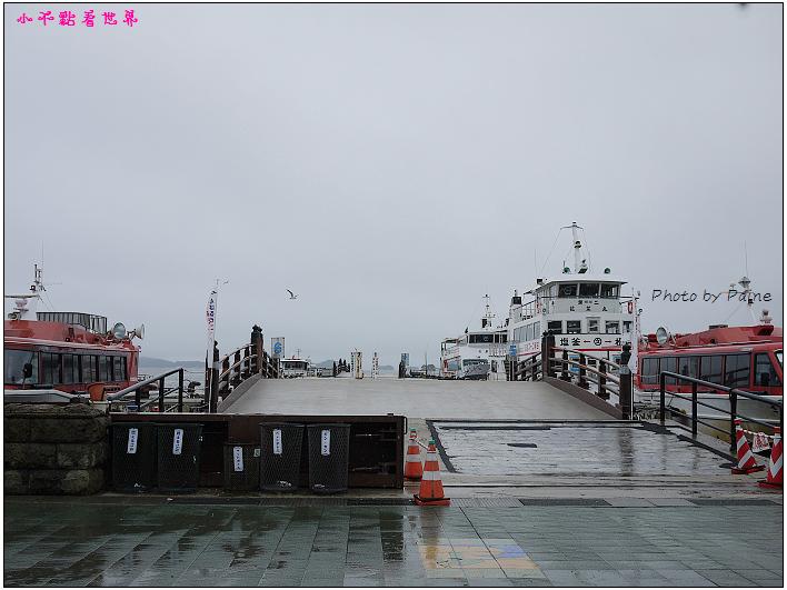 仙台松島遊船餵海鷗-07.jpg