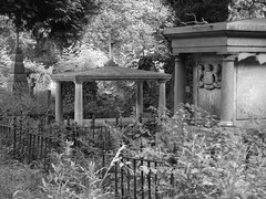 Nature Reclaims The Cemetery (Wurzel) Tags: old blackandwhite bw history broken nature overgrown cemetery grave graveyard neglect dead ancient cross decay tomb creepy undead southampton gravestones
