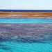 ...a Grande Barreira de Corais