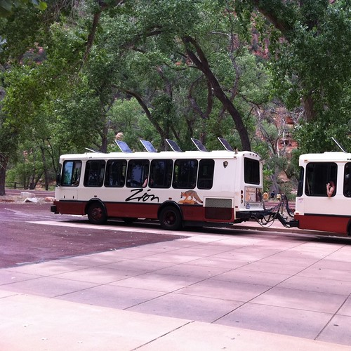 Zion buses