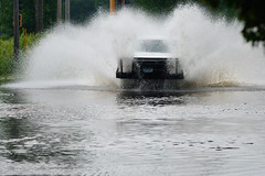 Flooding DSC_1822