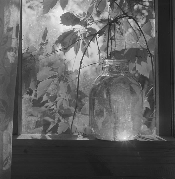 Dacha still life / Дачный натюрморт