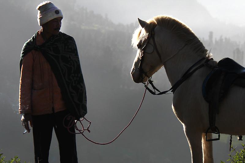Horseman IMG_5055-w