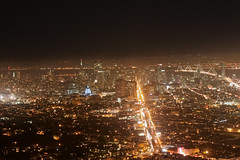City Lights (T3HTROLL) Tags: sanfrancisco california cityhall citylife tourist castro twinpeaks baybridge bayarea nightlife haightst