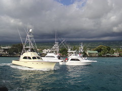 Hawaii Interantional Billfish Tournaments