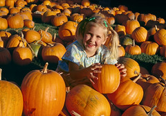 "Little girl picks her pumpkin (IronRodArt - Royce Bair (""Star Shooter"")) Tags: autumn orange holiday color cute fall halloween nature girl smile vegetables field childhood youth rural season pumpkin fun outside outdoors happy person countryside kid october hug child little jackolantern farm country seasonal young harvest adorable lifestyle happiness enjoy pick patch agriculture cheerful find choose select ripe"
