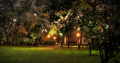 Esperando la lluvia - Waiting for the rain (celta4) Tags: park parque trees texture textura water night twilight agua buenosaires arboles nocturna motat penumbra argetnina theworldwelivein tatot