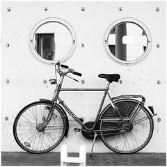 Stefan Hchst (It's Stefan) Tags: blackandwhite bw blancoynegro window monochrome bike sport wall germany concrete deutschland noiretblanc geometry wand rad cement bicicleta round bici nrw sparta minimalism velo duesseldorf fahrrad biancoenero beton bicicletta hollandrad    dutchbike  herrenrad biciclo  siyahvebeyaz schwazweis   stefanhchst