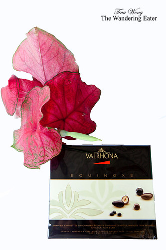 Valrhona EQUINOXE Collection Box