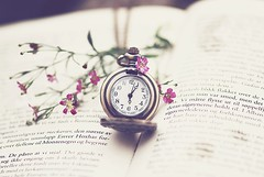 (KarolineNH) Tags: pink flower clock norway book nikon text tok tik