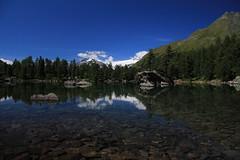 saoseo see (chris_0701) Tags: mountain lake alps tree water berg stone lago mirror schweiz switzerland see wasser swiss berge alpen svizzera sao stein spiegelung baum seo puschlav poschiavo saoseo sfazu