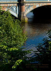 D90-36871.jpg (Carsten Saager) Tags: bridge scotland glasgow albert