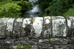 Wall on a river (Mike Stimpson) Tags: bridge wall river wednesday bricks ww dovedale