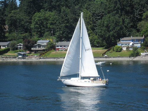 Sailboats on Puget Sound