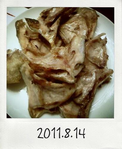 20110814_Photo Diet_3