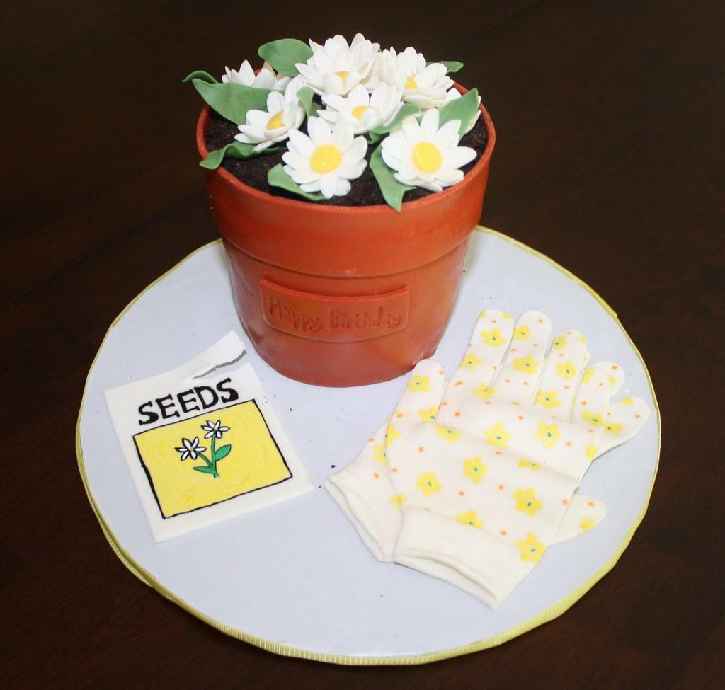 Daisy flower pot cake