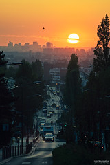 7:20PM (Marc Benslahdine) Tags: street sunset cars rue coucherdesoleil voitures lightroo