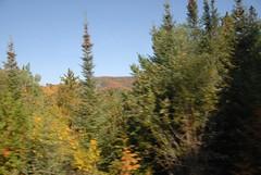 DSD_7729 (Greying_Geezer) Tags: autumn ontario canada fall colors colours scenic trains autumncolours railways railroads saultstemarie on algoma agawacanyon traintour