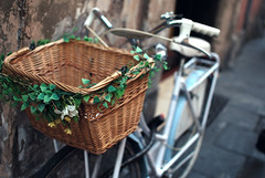 Decorated bike basket (josemanuelerre) Tags: park street old travel flowers italy plant flores rome flower roma verde green planta mimbre leaves bike bicycle wheel wall vintage pared calle holidays alone basket exercise bokeh flor bicicleta solo desenfoque wait wicker sola antiguo viajar ruedas decorated aparcar hijas cesta ejercicio esperar adornada