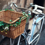 Decorated bike basket