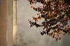 (simona.sagripanti) Tags: italy white church wall pastel lombardia neutral reflectionoflight portalbera