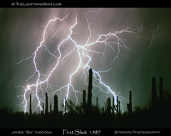 Striking Photography (ricwooten) Tags: decorations arizona cactus nature photography landscapes desert framedart az palmtrees galleries gifts photographs tropical lightning saguaro scenics strikingphotography lightningimages lightningphotography lightningstorms insogna thelightningman jamesinsogna