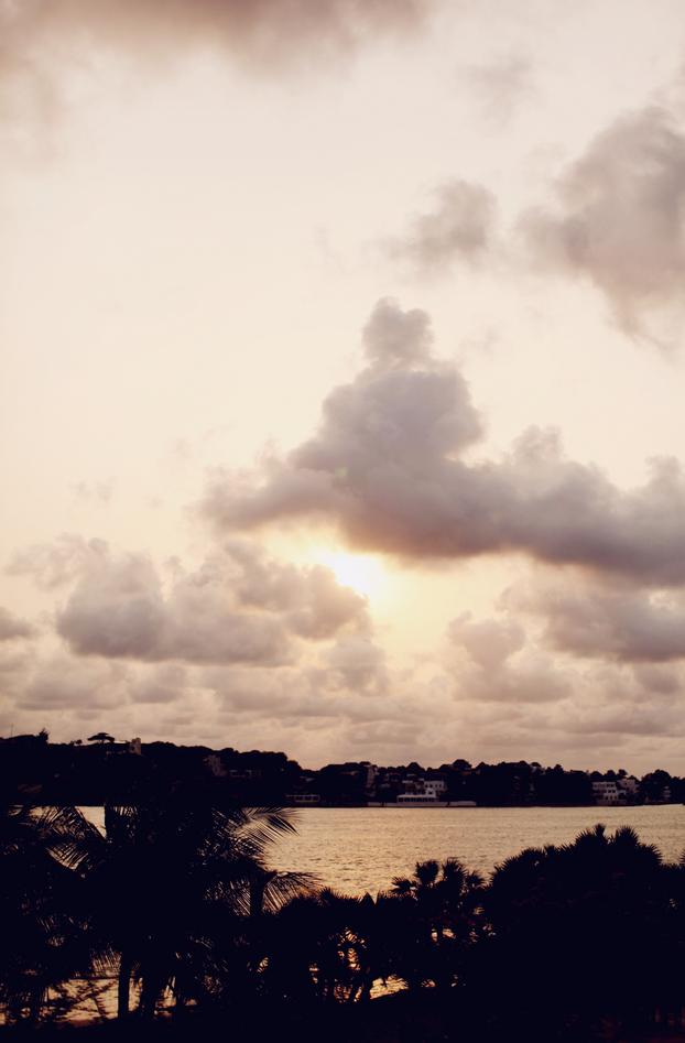 Lamu 24