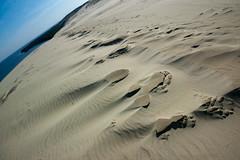 DSC_7196.jpg (ak.mish) Tags: landscapes sand russia balticsea knigsberg kaliningrad  curonianlagoon 2011    parnidisdune k k