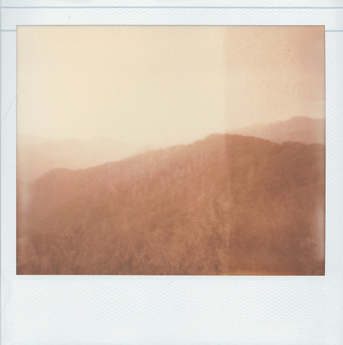 The Smokies In Roid