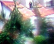 la vue du poisson rouge 405 (alainalele) Tags: camera digital photoshop toy polaroid foto kodak low internet creative gimp commons lo modified fi bienvenue cheap ultra licence basse presse fidelity ulead bloggeur fidlit paternit fauch alainalele lamauvida