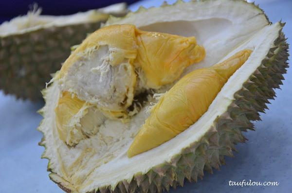 ss2 durians (6)