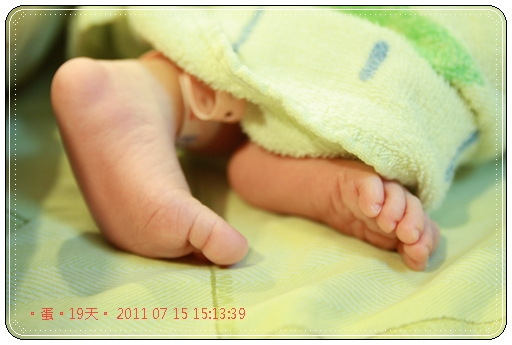 縮20110715-15 13 39蛋母同19d
