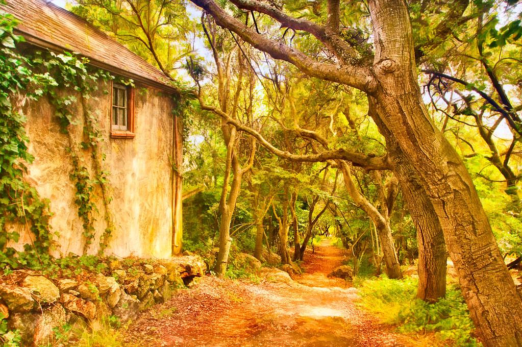 Indian Trail, Berkeley © Harold Davis