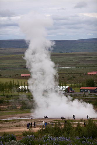 Geyser Plume At Geysir