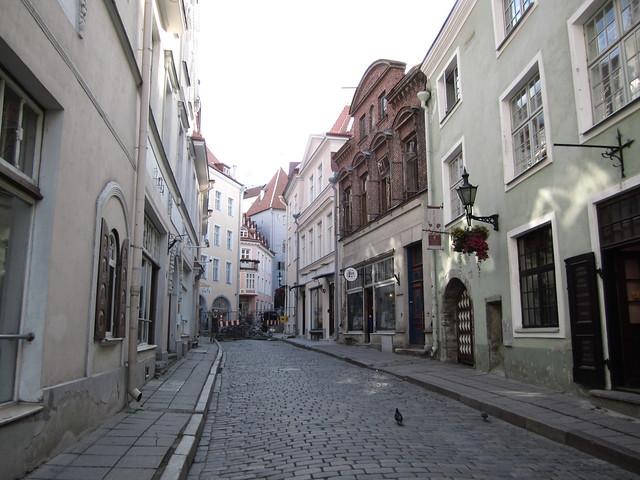 Tallinna 2011 173