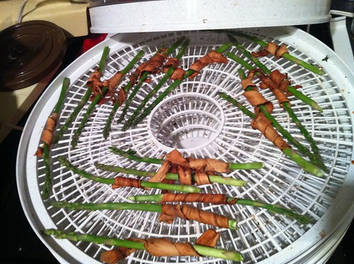 dehydrating bacon-wrapped asparagus by unglaubliche caitlin