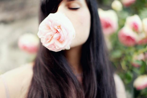 Au nom de la Rose 04