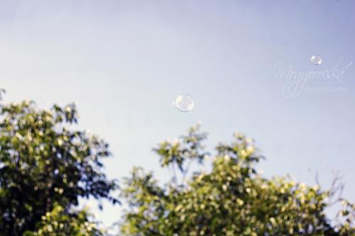 [35/365] My bubble dreams / Buborék álmok