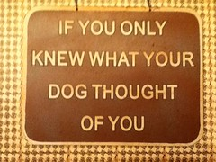 sign that says If You Only Knew What Your Dog Thought Of You
