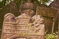 Mortuary Blocks IV (Ildegarde Grznic) Tags: old pink cemetery grave graveyard sadness republic sad czech prague praha graves horror jewish cimitero 2011 ebraico mourge