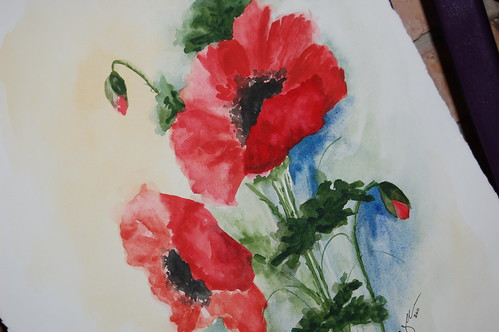 Painting Poppies - Strandz