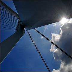 here comes the sun (leuntje) Tags: bridge netherlands architecture rotterdam kopvanzuid architectuur erasmusbrug nieuwemaas unstudio benvanberkel dezwaan cablestayedbridge tuibrug deharp