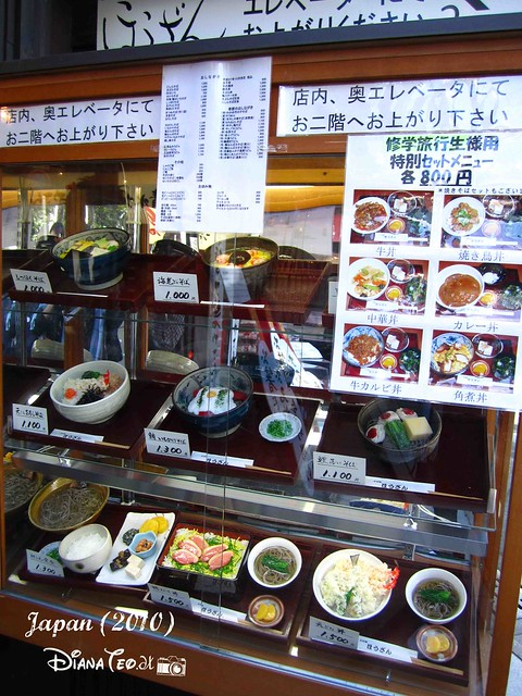 Japan Plastic Foods  (2)
