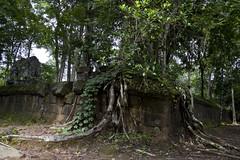 Prasat Thom (Keith Kelly) Tags: stone religious temple ancient asia cambodia southeastasia capital ruin kingdom holy sacred kh siemreap angkor laterite kampuchea kohker khmerempire prasatthom jayavarmaniv brahmanic 928944ad