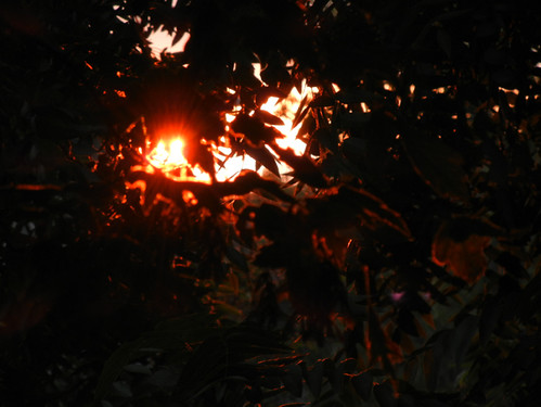 Sunset _ 4216