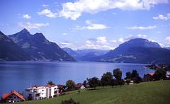 Alps beauty (Tanya Skvortsova) Tags: sky lake mountains film switzerland fuji swiss slide f100 velvia analogue reverse ch vierwaldstttersee 135mm 14mm samyang