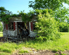 Before (peanutbasher) Tags: building nature photography country northcarolina falling shack beforeandafter